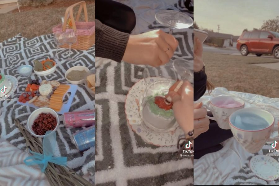 @ava.sabo on TikTok has one of these aesthetically pleasing picnics with one of their friends.